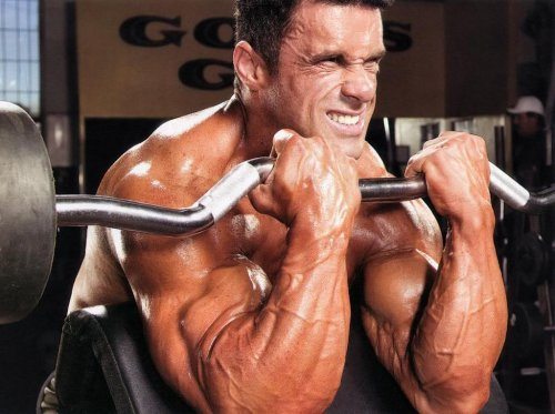 http://fatalenergy.com.ru/power/uploads/posts/2013-10/thumbs/1381022144_bigger-biceps.jpg